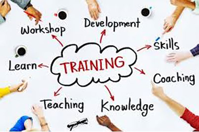 Training And Skills Development